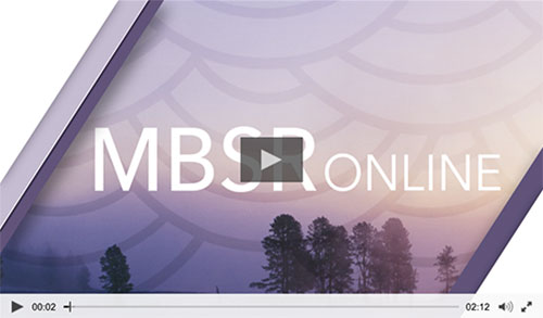 mbsr-course-video
