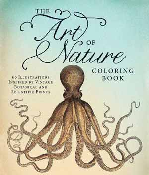 nature of art book