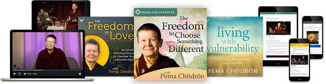 pema-freedom-collection